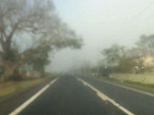Fog near Ulmarra - Sept 30, 2015