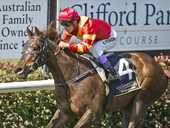 TRAINER Kevin Kemp was quick to praise horse and rider after Toowoomba four-year-old Nandine Road made a return to the Clifford Park winner's stall yesterday.