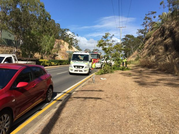 A woman crashed into a tree on Phillip St this morning. Photo Campbell Gellie / The Observer