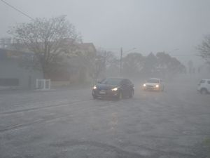 Chinchilla storm video - Leslie-Ann Gardener