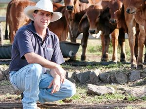 Farmer appeals $4m quarry because of disruption to cattle