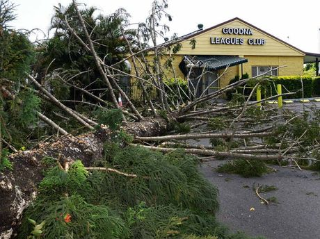 The Goodna Leagues Club was lucky to escape significant damage when this tree fell during Sunday's storm.