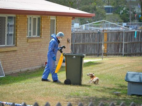 In a murder investigation forensic investigators need to photograph everything including the rubbish bins, but a faithful family dog can make this a bit hazardous.