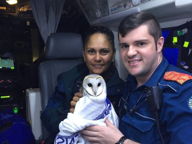 Paramedics Seminah Williams and David Taylor rescued a barn owl with a badly injured wing on Tuesday.
