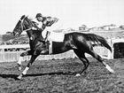 Phar Lap: A true Aussie legend. Even if he was a Kiwi