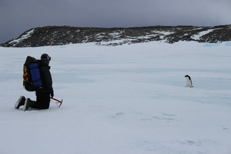 Gladstone man Karl Bettridge is working in Antarctica. Contributed.