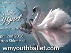 A Fairy Tale Ballet for the whole family, inspired by the tale of The Ugly Duckling. Featuring a special guest performance by the Toowoomba CS Youth Choir.