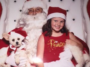 Furry friends bring out the Christmas cheer