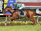 RACING: Mark McCann believes the Magic Millions Two-Year-Old Classic win by Capitalist is a great boost to the Daandine Thoroughbred Stud at Goomburra.