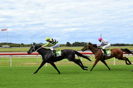 Laika Gordo hangs on to the lead as Fashion Saga makes a dash for the line in Race 3 at yesterday's Ballina   carnival.