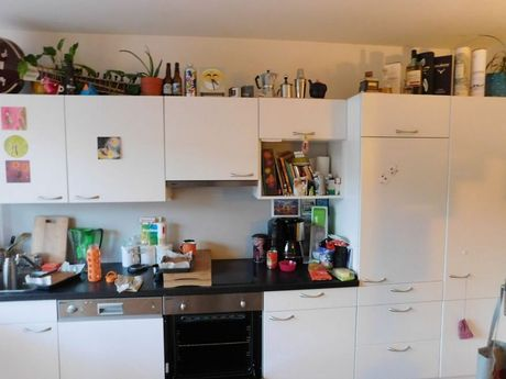 Can you find Pedro the cat in this photo?