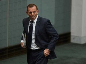 "Eric Abetz: Tony Abbott is ""absolutely no Kevin Rudd"""