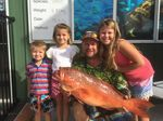 Tanyon Hoffman and the family bought a few of these trout home recently. They would have landed more if it wasn't for the sharks. Photo Freedom Fishing Supplies / Fraser Coast Chronicle
