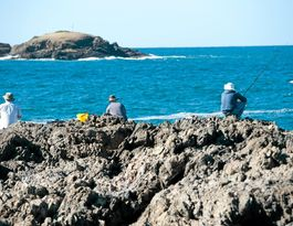 Compulsory lifejackets for rock fishers