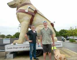 Guide dog makes huge change in Nate's life