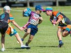 Oztag's Junior State Cup is up for grabs