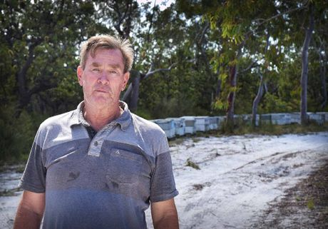 LOST FOR WORDS: Bob Butter revisited the site where he lost his pet dogs in a freak bee attack.