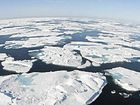 "RAPIDLY disappearing Arctic sea ice is about to set a record after an ""absurdly warm"" winter at the top of the world."