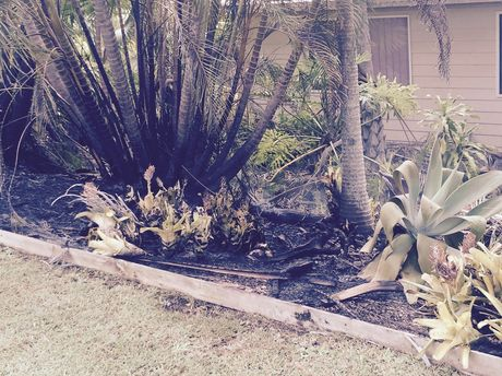 A garden damaged in an alleged arson attack at Beerwah