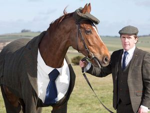 Only in the UK: Man has tweed suit made for horse