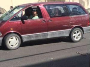 WATCH: Cars dodge brown snake in Gladstone's CBD
