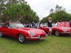 Fixed head or drop top E-Type? Seen at the 2016 National Jaguar Rally, Golden Beach. Photo: Iain Curry / Sunshine Coast Daily