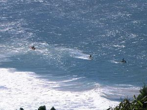 Mystery surrounds sighting of body in the ocean at Coolum.