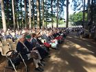 VETERANS, their families and supporters have gathered among the pine trees for the Buderim morning service.