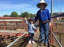 Agents, judges, yardmen, breeders and buyers gathered for the sixth annual Santa Gertrudis sale at the Warwick Saleyards.