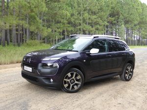 Living with the Citroen Cactus SUV: road test and review