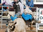 THE CFMEU May Day Rodeo promises edge of seat action