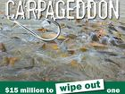 THE Australian Government will launch a $15m nationally coordinated approach to eradicating the common carp.