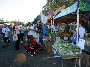 Put forward your idea for a market in Byron