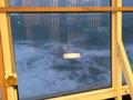VIDEO: Sea-sickening clip from Spirit of Tasmania in storm
