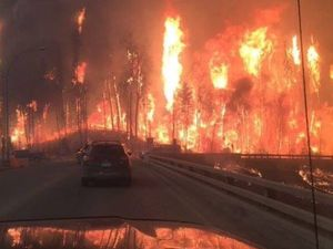 Canadian city evacuated as wildfire shocks the world