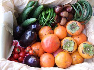 Lockyer producing sweet vege goodies