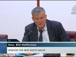Liberal Senator Bill Heffernan describes 'fundamental flaw' in border security