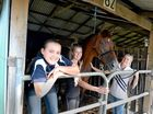 Lilly Horspool of Bowen, Ash and Tyler Harris of Brisbane, are in Lismore for the Northern NSW Hack Championships.