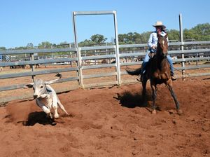 Warrego Campdraft overflowing with talent