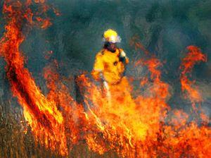 Firefighters battling Traveston grass fire