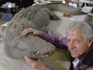 Crocodile Dundee croc up for grabs at antiques fair