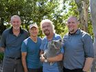 Sir Richard Branson's plan to save the koala