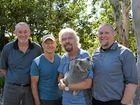 Sir Richard Branson's plan to save the koala