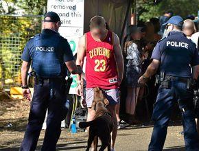 Drug dogs sniff out 18 music festival arrests
