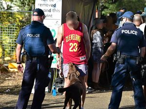 Drug dogs sniff out 18 music festival arrests