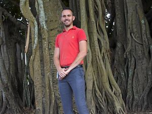 Council begins work to trim M'boro's Banyan Fig tree