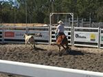 Action at the Calliope campdraft
