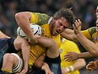 ON THE MEND: Wallaby Kane Douglas is tackled by Scotland defenders during the Rugby World Cup quarter-final at Twickenham last year.