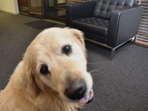 Best friend at work