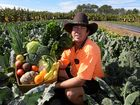 How you can get a full box of fresh fruit and veg for $20